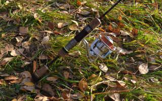 Микроджиг для начинающих: как собрать снасть, основы техники ловли