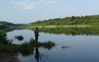Ловля хищных рыб на поплавок