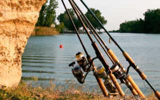 Спиннинг на щуку: выбор удилища и правильное его оснащение
