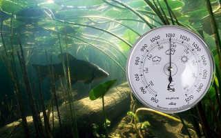 Атмосферное давление для рыбалки: влияние изменений погоды на клев