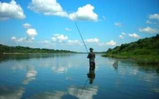 Рыбалка на Оке – лучшие места для ловли, выбор снасти и приманок