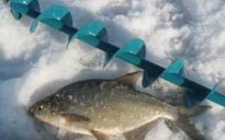 Ловля леща зимой: разнообразие способов ловли и применяемых приманок