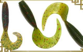 Ловля на твистер: выбор приманки и монтажа, тонкости проводки