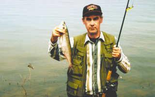 Ловля чехони весной: особенности поведения рыбы и подходящие снасти