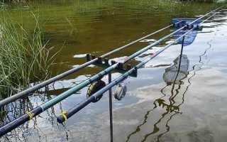Ловля леща на поплавочную удочку, виды удочек, выбор прикормки и приманки