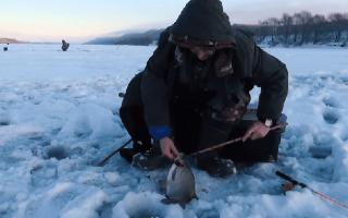 Ловля зимой леща на течении: место рыбалки и устройство снастей