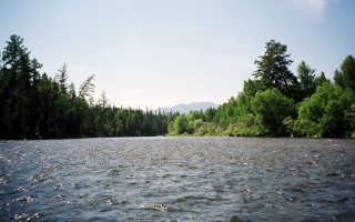 Рыбалка в Саянах