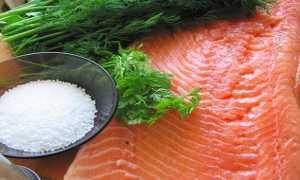 Как вкусно посолить красную рыбу в домашних условиях: сухой и мокрый посол