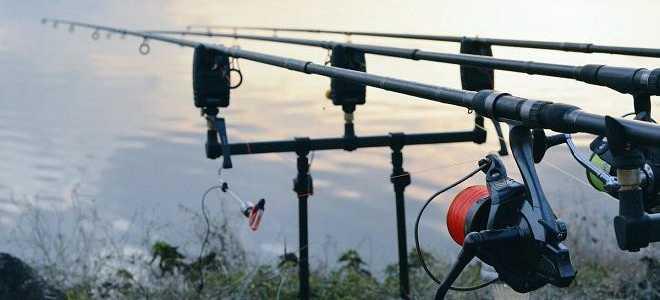О сигнализаторах поклёвки: что это такое и как сделать