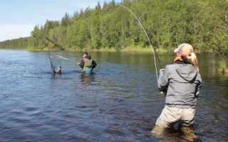 Рыбалка в Омске и Омской области – лучшие места, отзывы рыбаков