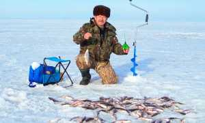 Рыбалка в декабре: какую рыбу и как можно ловить