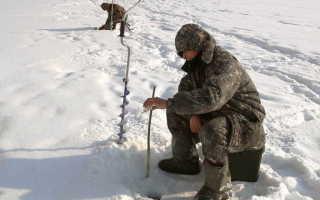 Ловля леща: снасти и способы ловли. Летняя и зимняя рыбалка на леща