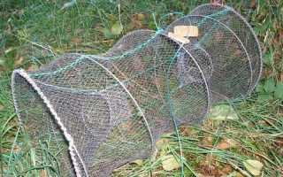 Морда — древнее приспособление для ловли рыбы
