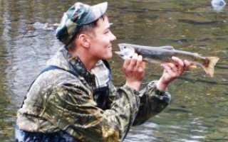 Рыба голец: особенности проживания и поведения, основные способы ловли