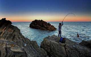 Спиннинг для рокфишинга: основные критерии выбора хорошего удилища