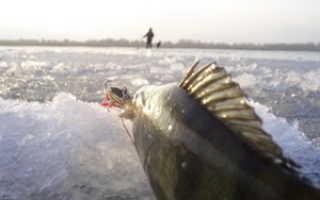 Ловля зимой на перекатах