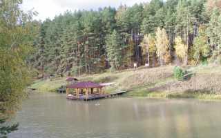Рыбалка в Тульской области: платные турбазы и рыбхозы, бесплатные реки, пруды и озера