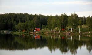 Триал Русская Рыбалка в Чеховском районе Подмосковья: описание базы, цены, отзывы