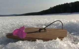Ловля щуки по первому льду: где, как и на что