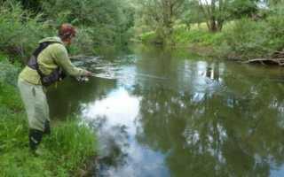 Ловля спиннингом на малых реках: выбор снастей и приманок