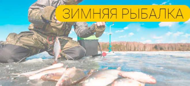 Как выбрать день для ловли рыбы зимой?
